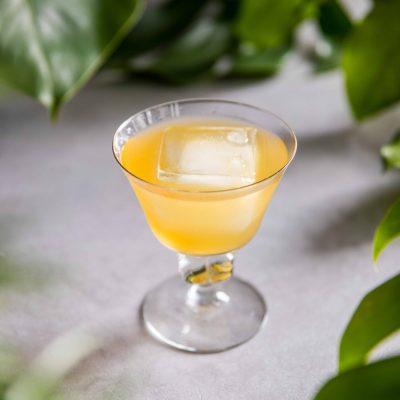 Rum Punch-2