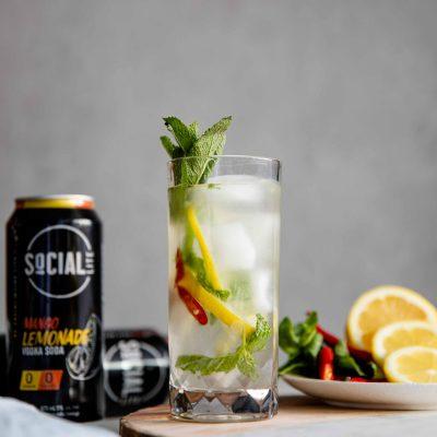 Socialite Lemonade-3
